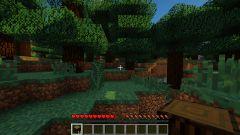 Как пройти игру «Minecraft»