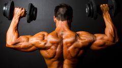 Эффективные упражнения с гантелями на плечи