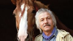 Михай Ермолаевич Волонтир: биография, карьера и личная жизнь