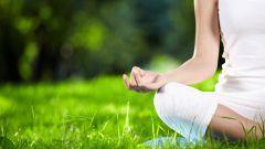 Какие растения помогают справиться с депрессией и стрессом
