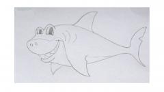Как нарисовать акулу карандашом