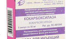 Кокарбоксилаза: инструкция по применению, цена, отзывы, аналоги