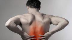 Как уберечь спину от травм: польза от занятий спортом