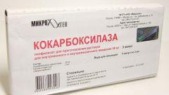 Кокарбоксилаза: инструкция по применению, показания, цена