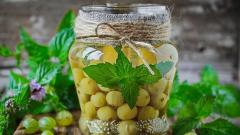 Компот из крыжовника с мятой: рецепты приготовления