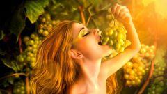 Чем полезен виноград для детей и взрослых