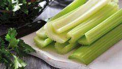 Сельдерей для похудения: рецепты с фото