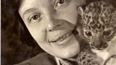 Вера Чаплина: биография, творчество