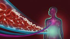 Что такое гликоген?