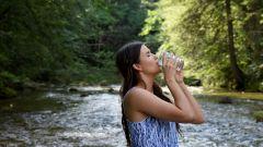 Как приучить себя пить больше воды в течение дня