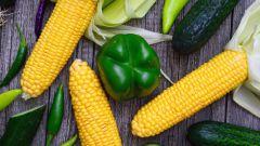 10 самых актуальных вопросов о правильном питании