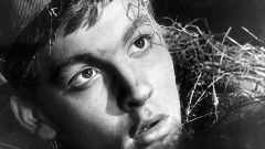Владимир Сергеевич Ивашов: биография, карьера и личная жизнь