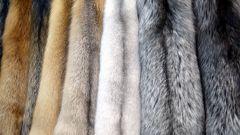 Как это возможно: эко-френдли мода вредит природе больше, чем натуральный мех