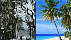 Куда уехать к морю в декабре