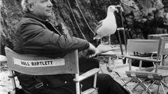 Холл Бартлетт: биография, карьера, личная жизнь