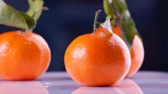Какой сорт мандаринов выбрать на Новый год
