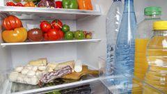 Бактерицидная лампа в холодильнике - залог сохранности продуктов