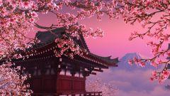 Учеба в Японии бесплатно с ежемесячным пособием: Honjo International Scholarships