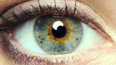 Мелькают мушки перед глазами: причины, лечение