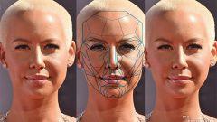 Золотое сечение лица как объяснение пропорций красоты