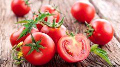 Как прорастить семена помидоров: полезные советы
