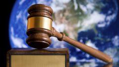 Правовые нормы: примеры, особенности правовых норм