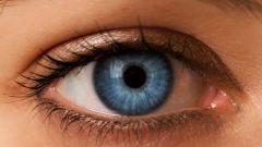Строение и функции зрительного анализатора