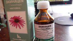 Настойка эхинацеи для иммунитета: отзывы врачей