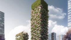 Что такое вертикальный лес?
