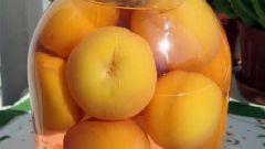 Как закрыть персики на зиму