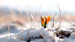 30 дел, которые надо сделать в марте