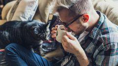Сонливость от кофе: в чем причина