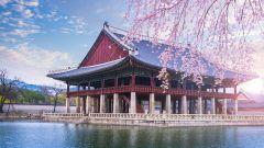 Учеба в Корее бесплатно без знания корейского: грант Korean Government Scholarship Program