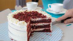 Как приготовить знаменитый торт «Красный бархат»