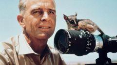 Бернхард Гржимек: биография, карьера, личная жизнь