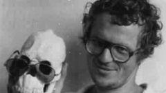 Ян Ларри: биография, творчество, карьера, личная жизнь
