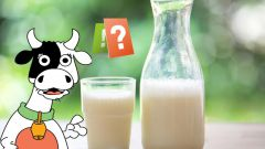 Как 2 литра молока поместить в литровую банку: загадка