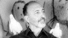 Роджер Баллен: биография, творчество, карьера, личная жизнь