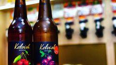 """""""Келвиш"""" (сидр): описание напитка, полезные свойства"""