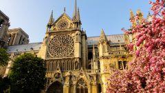 Собор Парижской Богоматери: история, легенды, интересные факты