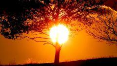 Природа и законы света