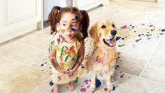 Ребенок хочет собаку: заводить или нет?