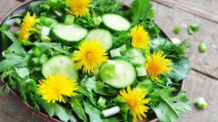 Сорняк в дело: готовим простой и полезный салат из одуванчиков