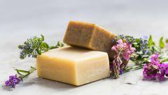 Как использовать хозяйственное мыло на огороде