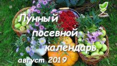 Лунный посадочный календарь садовода-огородника на  август 2019