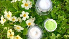 Лучший крем для сухой кожи лица – как правильно выбрать