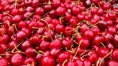 Вишневые секреты: о составе этой летней ягоды