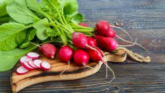 Как приготовить летние салаты с редиской