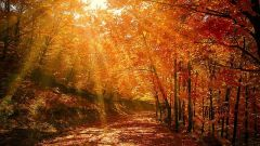 Осеннее равноденствие: что можно и что нельзя делать