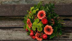 Магические свойства осенних цветов